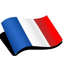 fr_flag_logo
